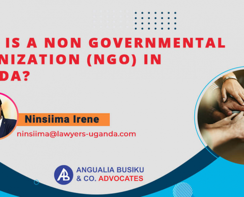 What-is-a-Non-Governmental-Organization-(NGO)-in-Uganda
